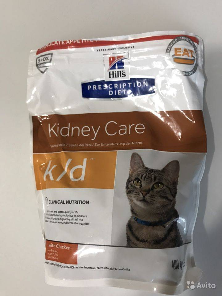 Почечная недостаточность у кошек:  симптомы и лечение, корм