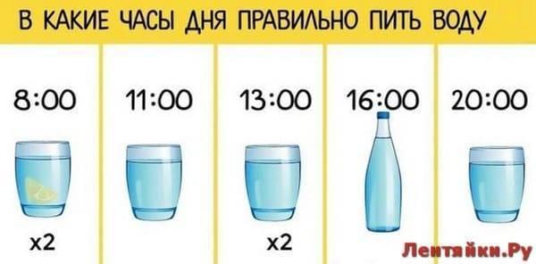 Почему кошка мало пьёт?