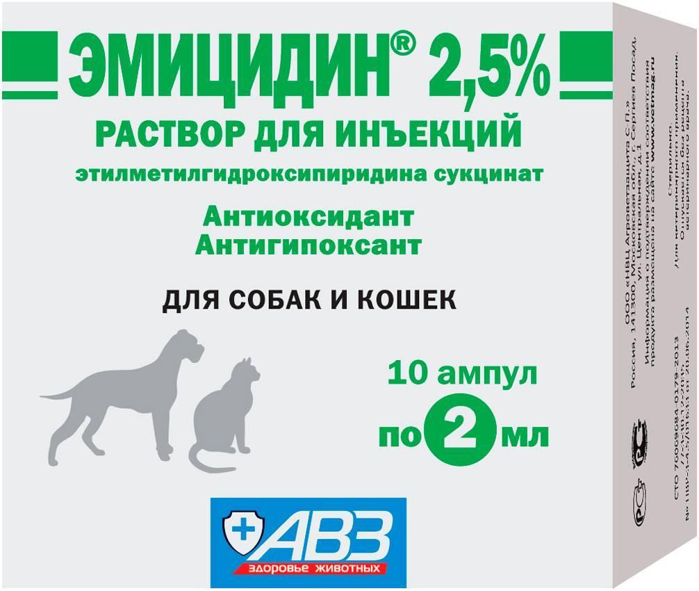 Эмицидин для кошек: состав, формы выпуска, показания к применению, дозировка