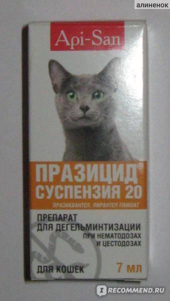 «празицид» (в таблетках) для кошек: инструкция по применению