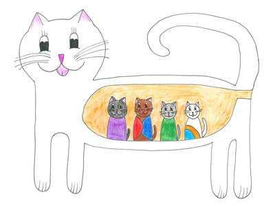 Вязка котов и кошек: что нужно знать