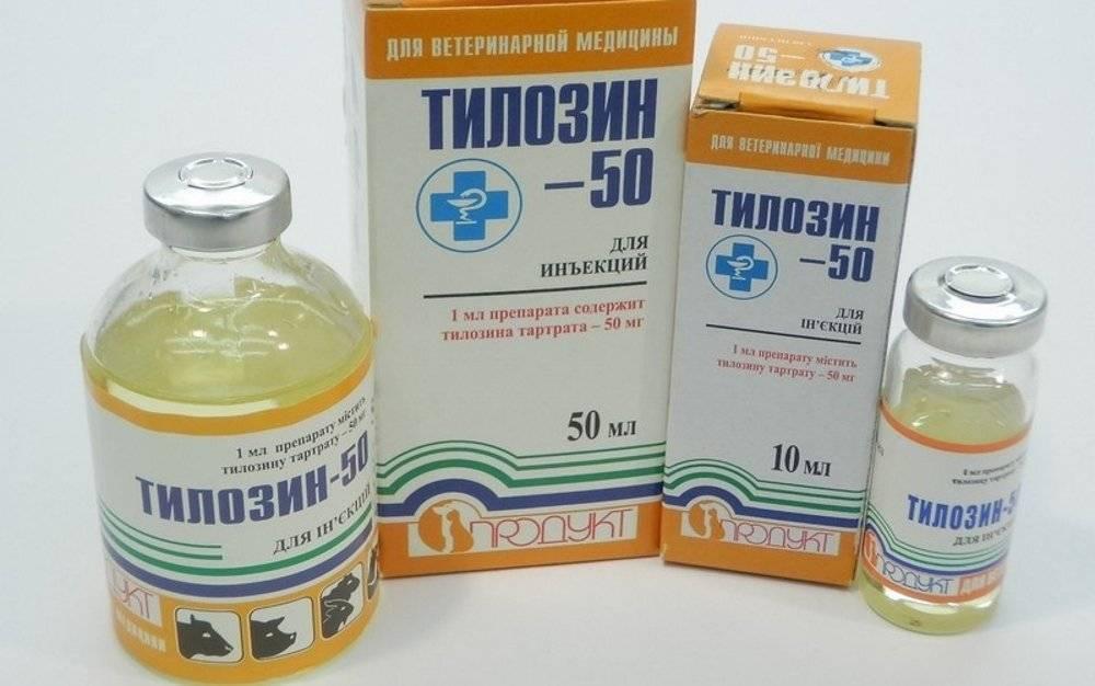 Фармазин-500 — антибиотик для лечения и профилактики заболеваний сельскохозяйственных птиц и животных