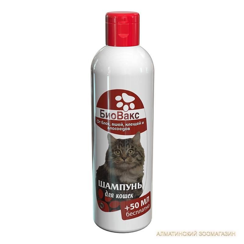 Шампунь от блох для кошек: состав и какой выбрать