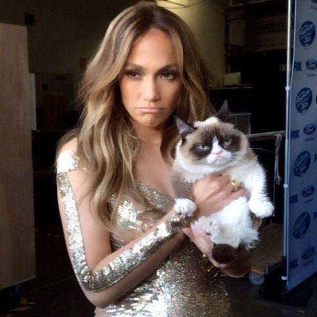Самые знаменитые в интернете коты и кошки