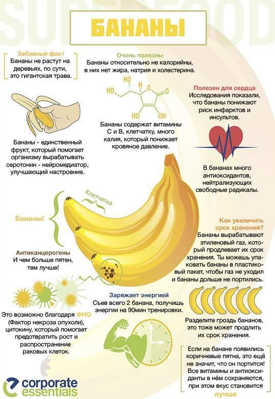 Польза и возможные вред банановой кожуры для человека   польза и вред