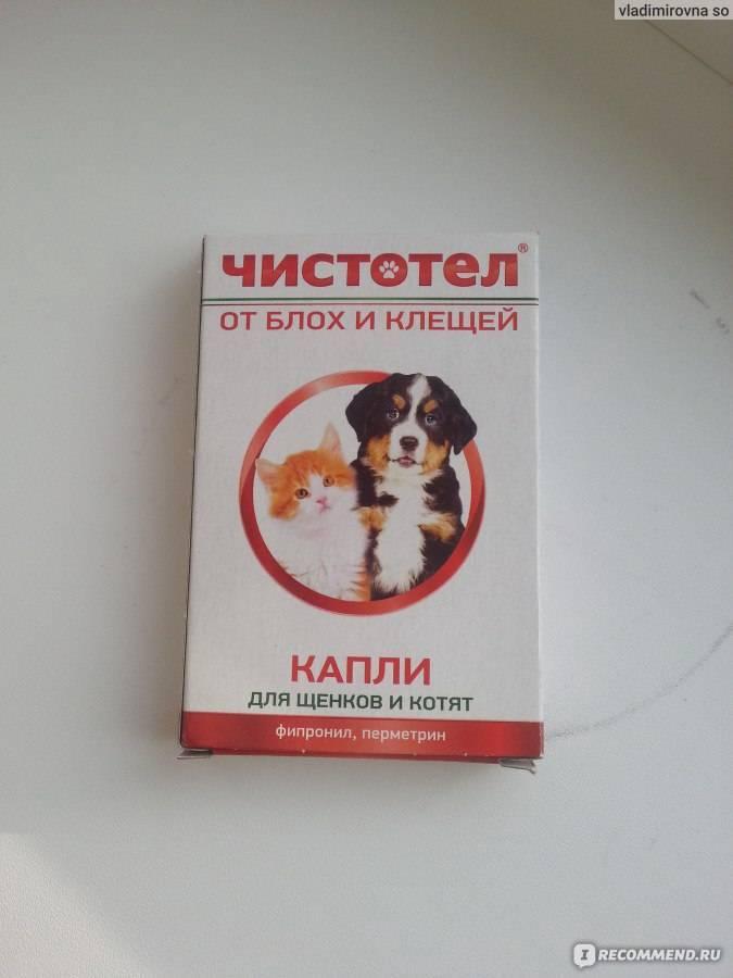 Капли чистотел для кошек от блох и клещей – инструкция по применению, отзывы