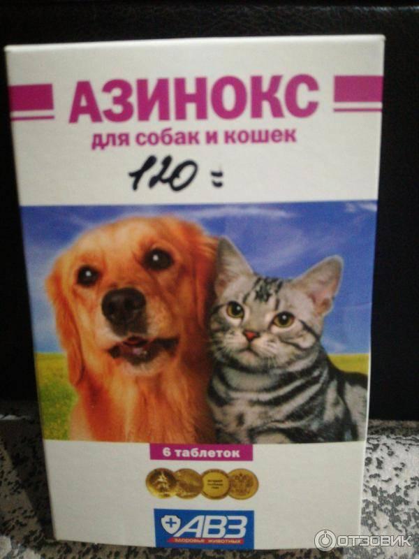 Азинокс для кошек - 105 фото и видео описание применения лекарства