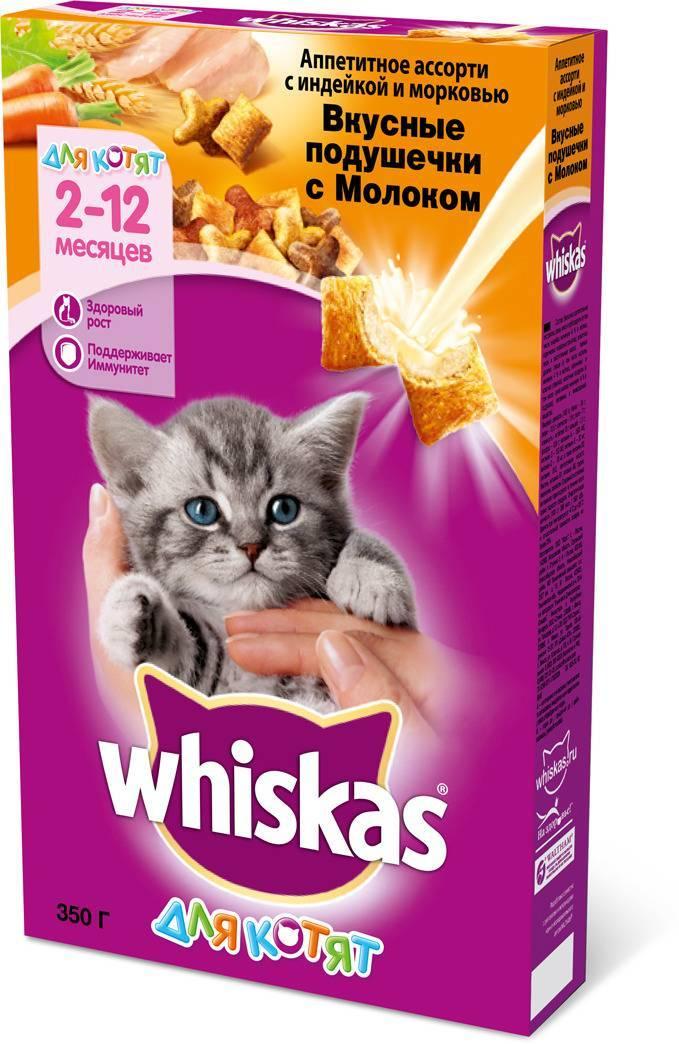 Можно ли давать Вискас котятам
