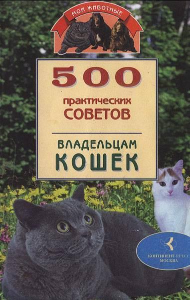 Инстинкт продолжения рода, или cексуальные кошачьи проблемы. признаки течки у кошки и что должен делать хозяин в этот период