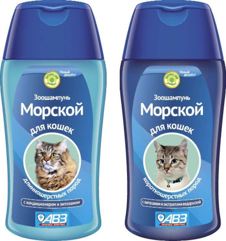 Как выбрать подходящий шампунь для кошек – топ лучших препаратов