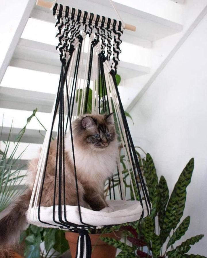 Лежанки для кошек (51 фото): лежак для кота на батарею, подоконник или пол из джинсов, трикотажной пряжи и других материалов