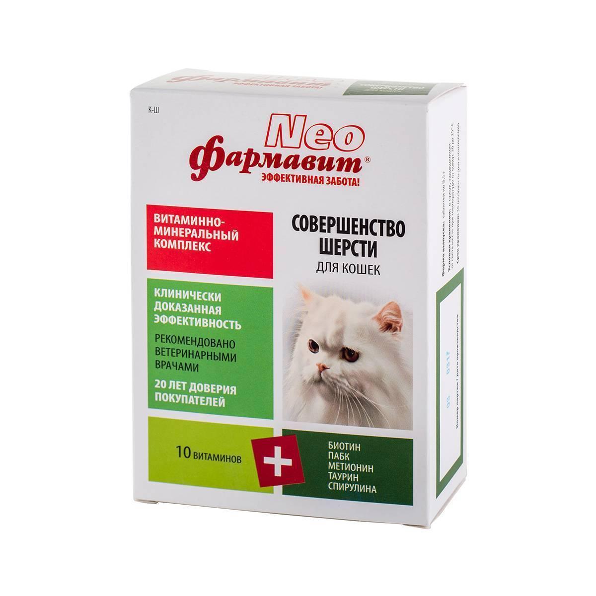 Какие витамины нужно давать коту