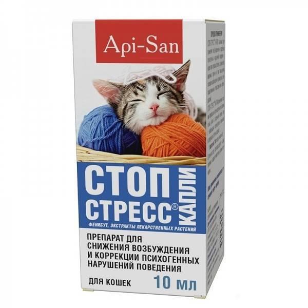 Успокоительное для кошек: какие препараты и когда можно применять