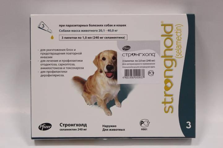 Капли стронгхолд для кошек и собак: инструкция по применению препарата (фото и видео)