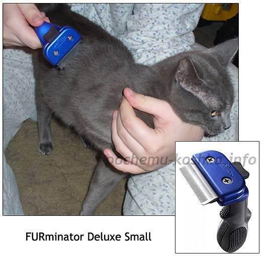 Фурминатор — чудо-инструмент для ухода за шерстью пушистого любимца
