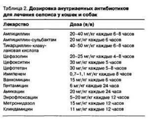"""Препарат """"преднизолон"""" для кошек - инструкция применения"""
