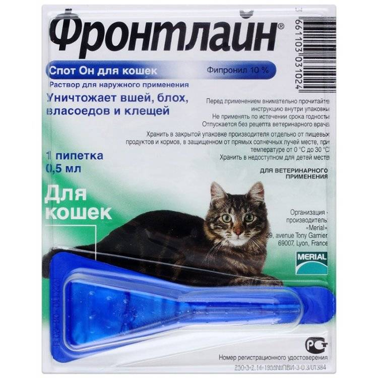 Капли от блох для кошек: плюсы и минусы, принцип действия, правила обработки, обзор средств
