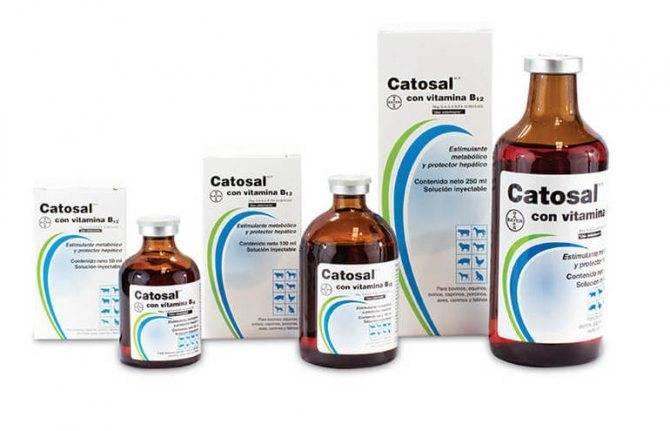 Катозал для кошек: инструкция по применению, аналоги, отзывы