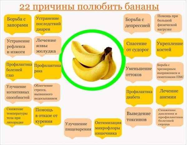 Можно ли кроликам бананы и банановую кожуру: польза или вред, особенности кормления