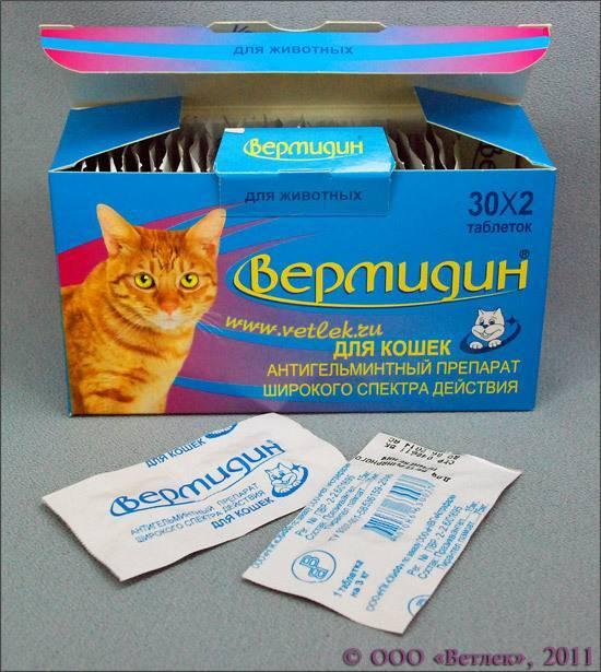 Средство от аллергии на кошек • аллергия и аллергические реакции