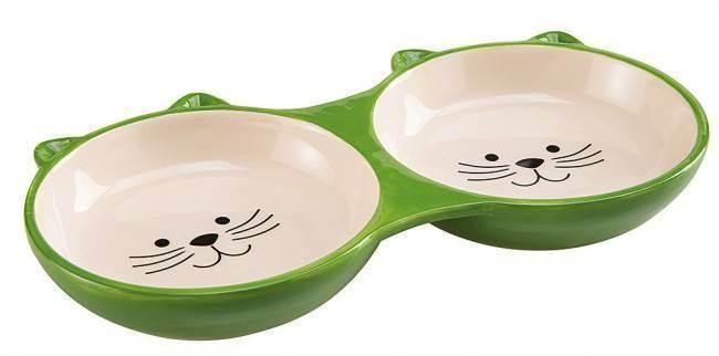 Кошачья миска: что о ней нужно знать
