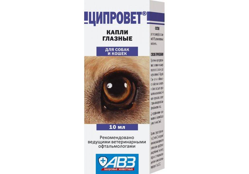 Инструкция по применению капель ципровета для ветеринарии. рассчитайте оптимальную дозу препарата. изучите широту антибактериального эффекта ципровета в виде глазных капель для животных