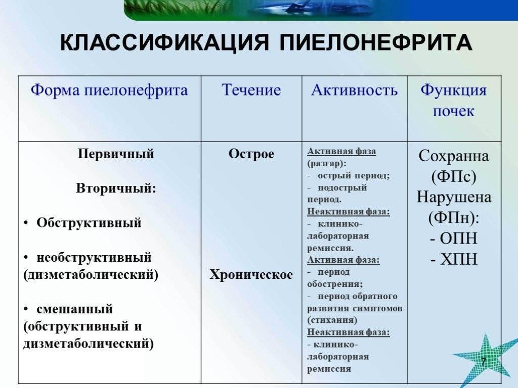 ᐉ цистит и пиелонефрит у кошек как лечить - zmclinic.ru
