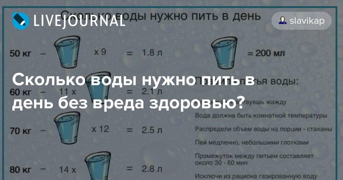 Сколько воды должна пить кошка в сутки: норма и отклонения