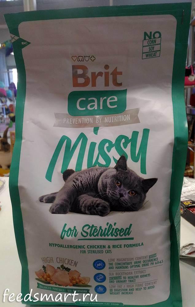 Корм для кошек брит – варианты питания для стерилизованных, больных, молодых и других животных