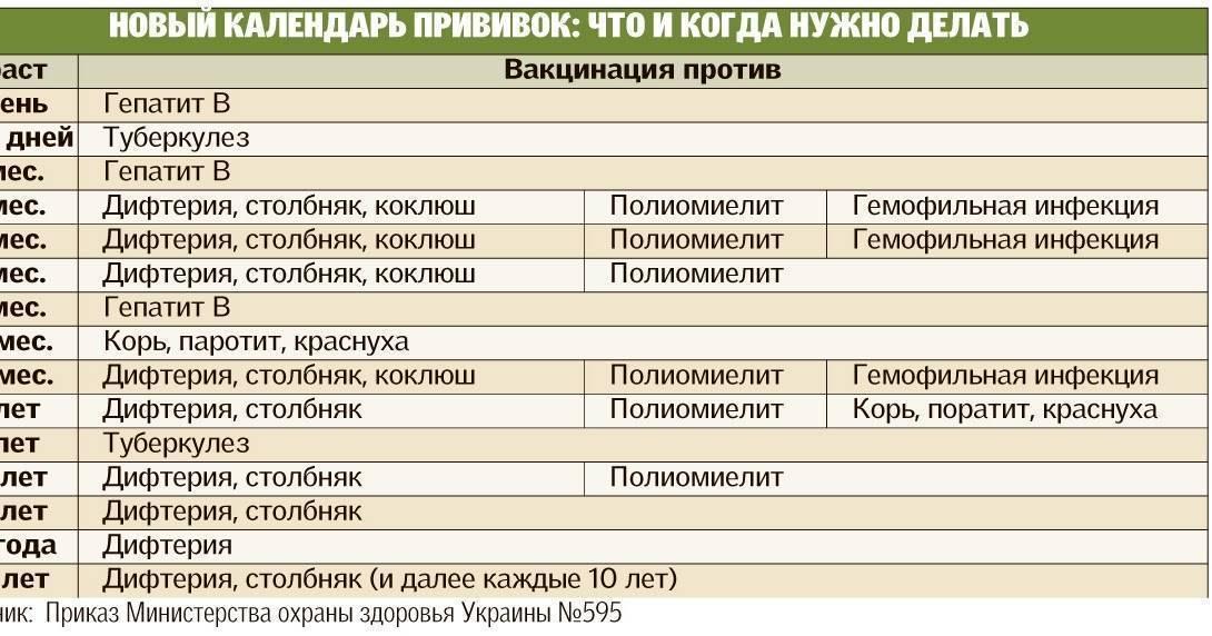 Вакцинация домашних животных: основные правила на supersadovnik.ru