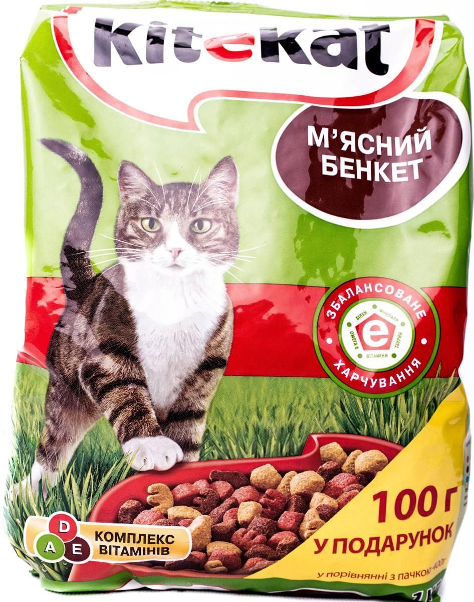 Акана для кошек и котят: состав разных видов сухого кошачьего корма