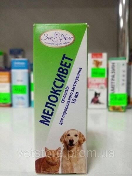 При боли в суставах – мелоксидил для собак
