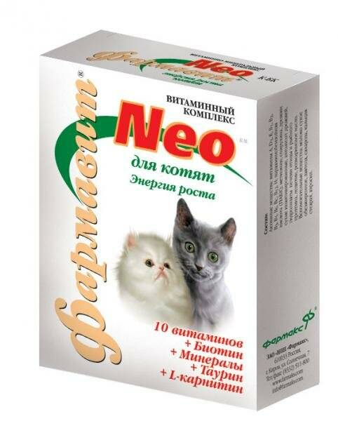 Значение и критерии выбора витаминов для кошек