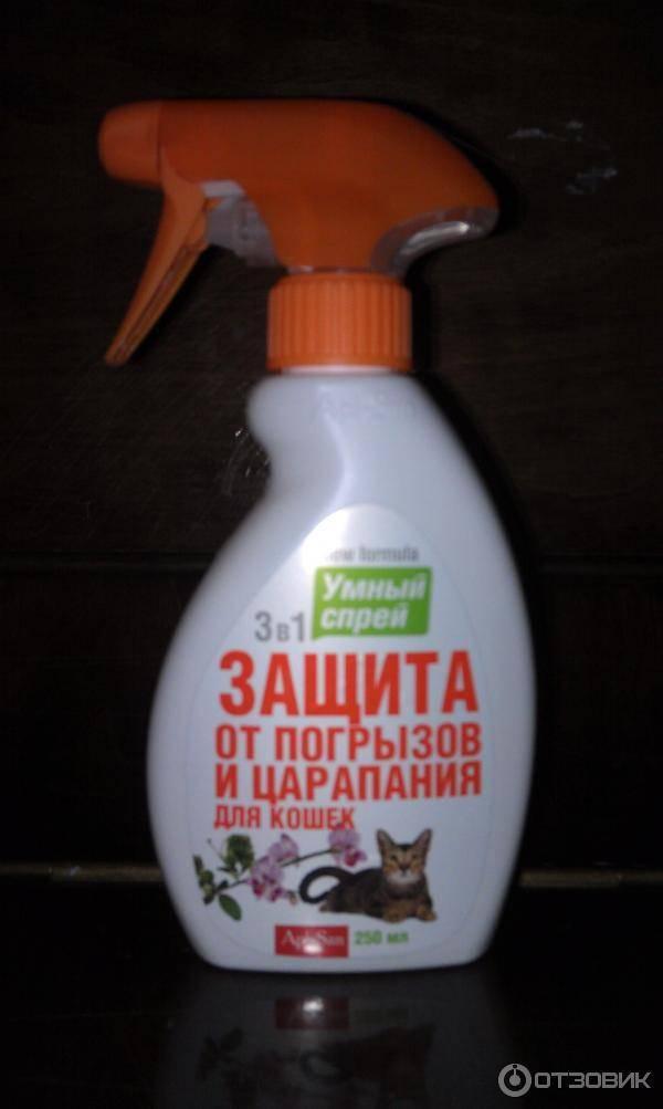 Какого запаха боятся кошки чтобы не гадили: особенности
