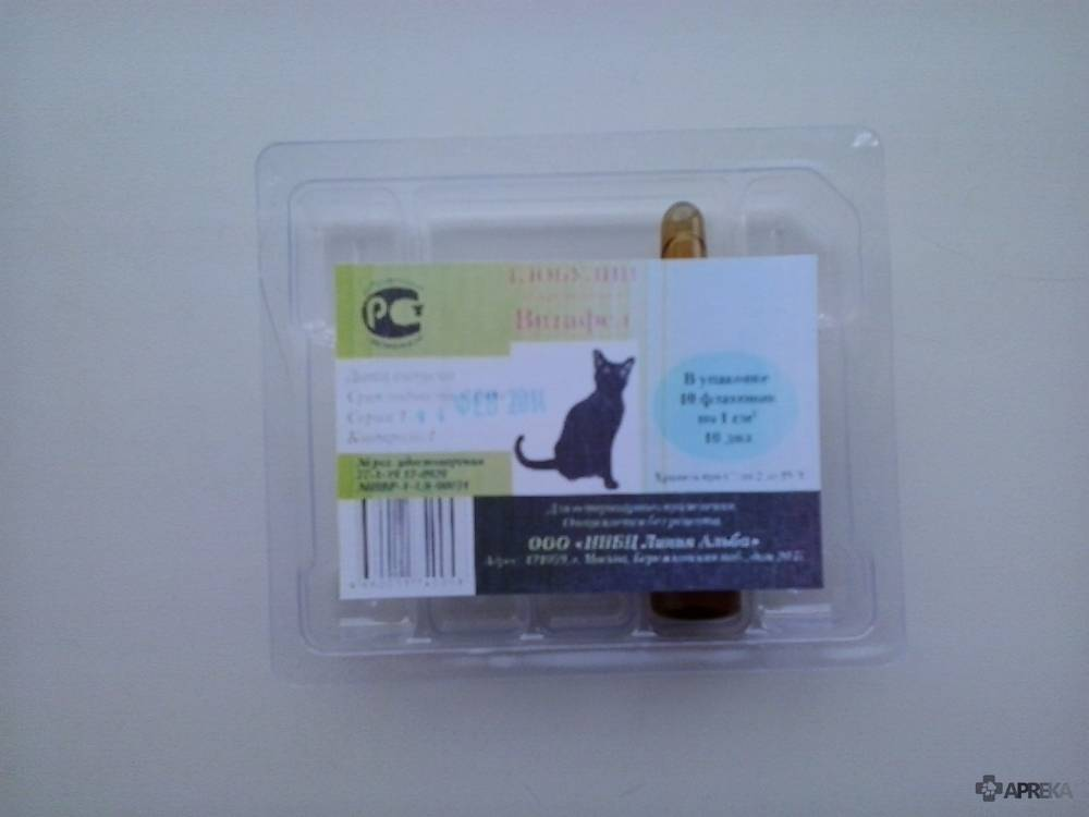 Витафел с для кошек: что это такое, инструкция по применению, показания и побочные эффекты