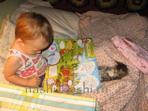 Как у детей грудного возраста проявляется аллергия на кошек: симптомы