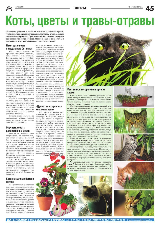 Какие растения опасные для кошек?