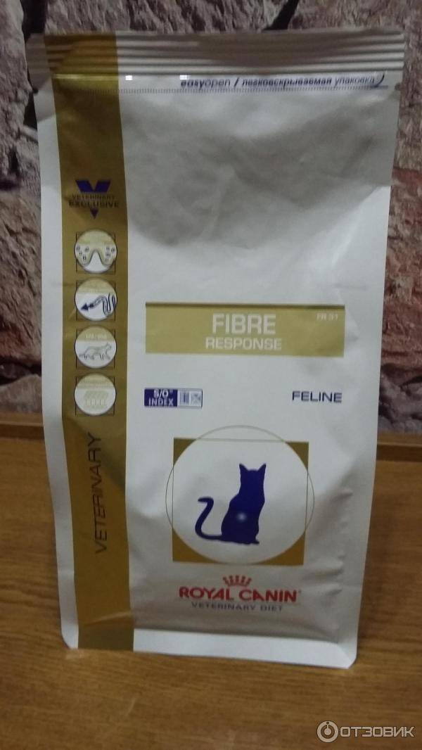 Сухой корм для кошек роял канин: лучшее качество в ценовой категории