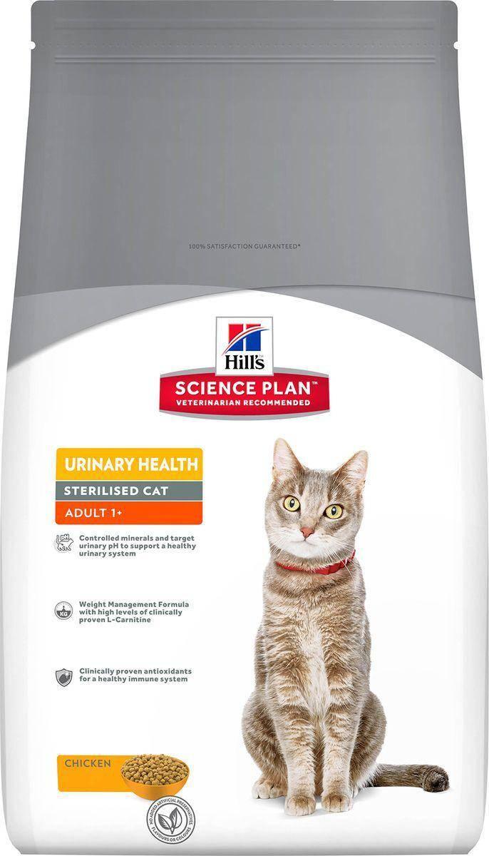 Рейтинг супер-премиум кормов для кошек: какой корм лучший?