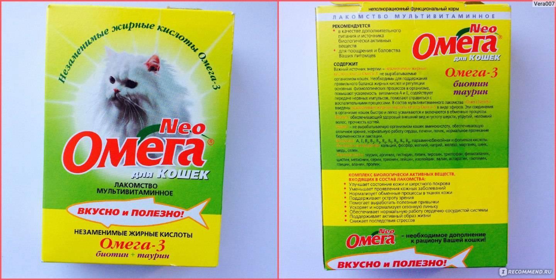 Таурин для кошек и добавки, содержащие таурин, вред и польза - petstime.ru