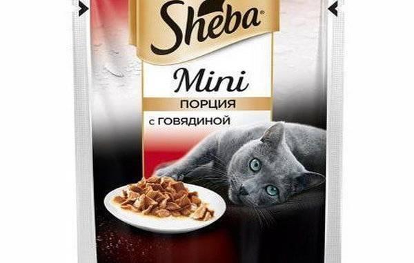 """Корм для кошек """"шеба"""" (sheba): состав, отзывы и аналоги продукта"""