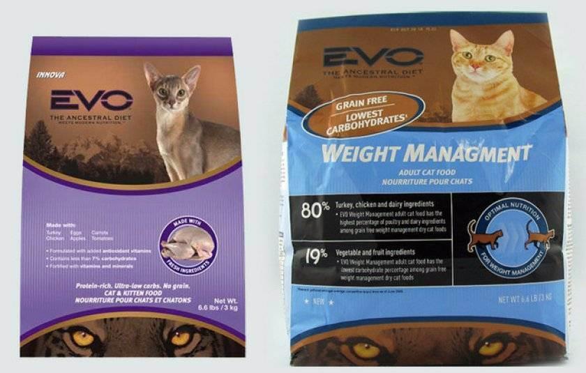 Можно или нельзя кормить кошек одновременно сухим кормом и натуральной домашней едой и почему?