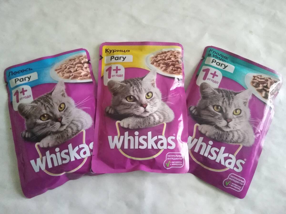 Корм для кошек вискас