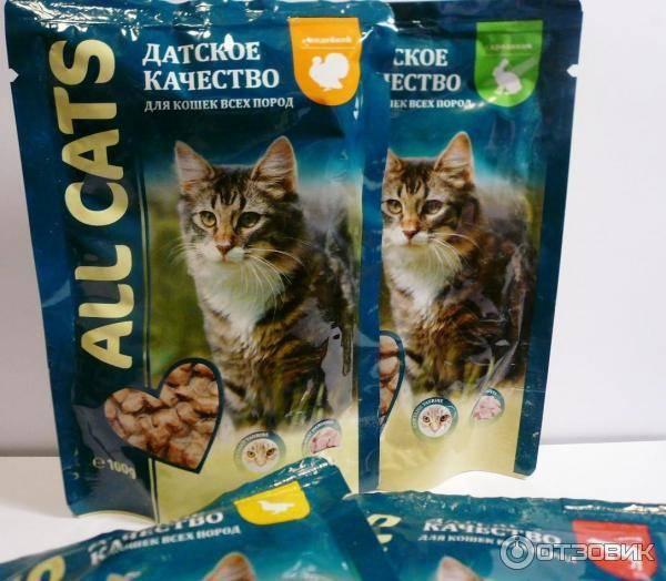 Что лучше для кошек – влажный или сухой корм ?