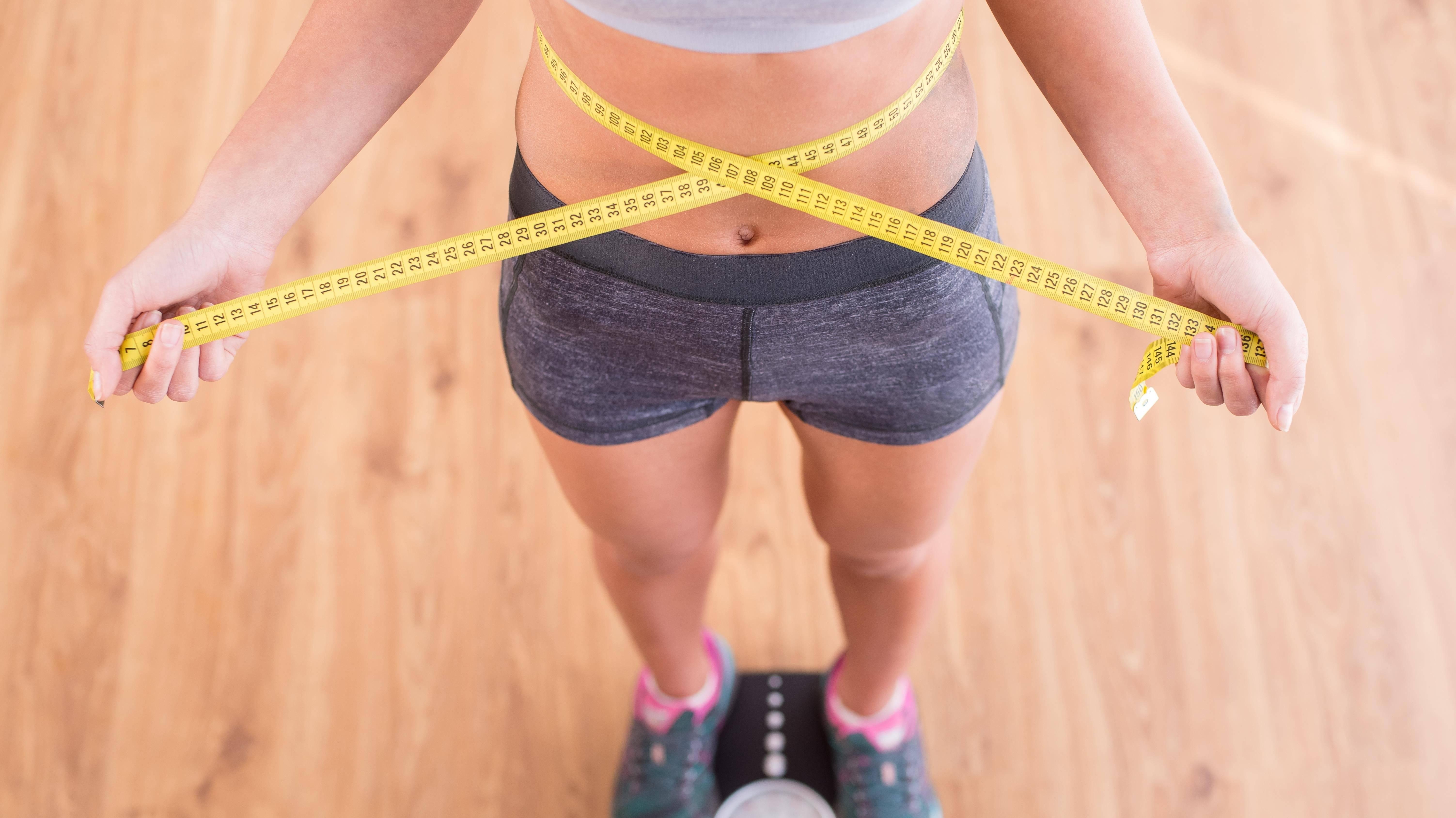 Почему кошка худеет: заболевания вызывающие потерю веса,психологические причины, что делать