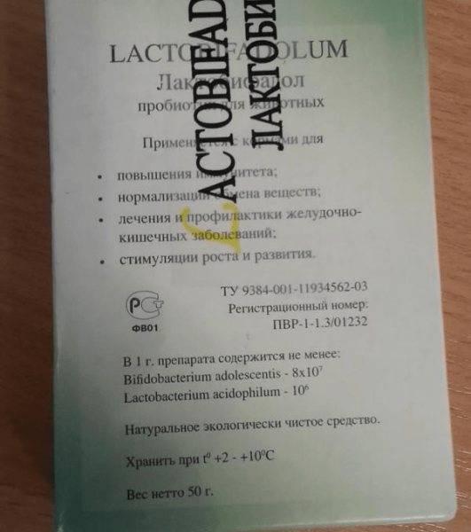 Лактобифадол для кошек: инструкция по применению препарата, содержащего бифидобактерии и лактобактерии
