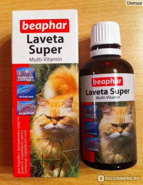 Витамины для кошек от выпадения шерсти: список и обзор лучших