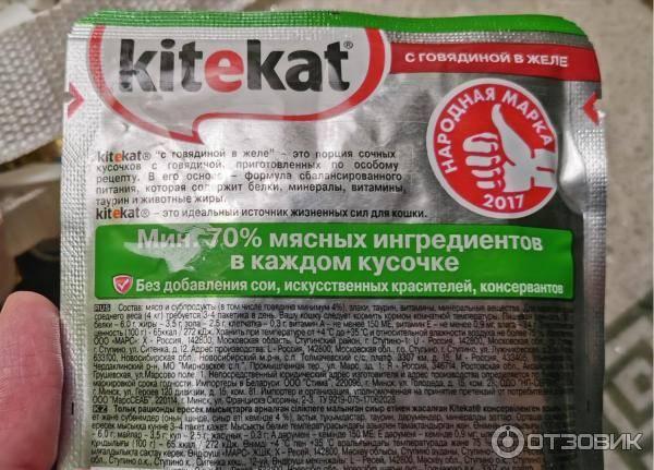 Сухие корма для котят и взрослых кошек бренда «acana»: состав, плюсы и минусы кошачьей продукции