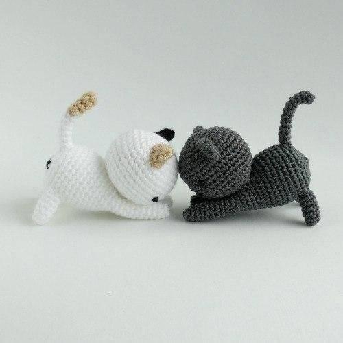 Можно ли мыть кошку после родов: мнение специалистов