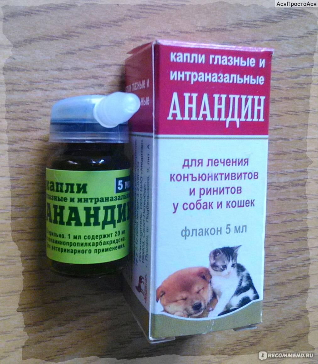 Максидин (капли) для кошек и собак | отзывы о применении препаратов для животных от ветеринаров и заводчиков